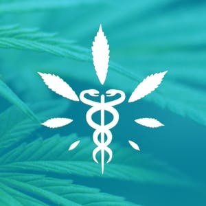 AASU Online Courses Medical Cannabis for Pain Control for Armstrong Atlantic State University Students in Savannah, GA