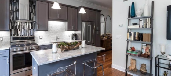 Housing Boutique Chicago Living in the South Loop! for College Students