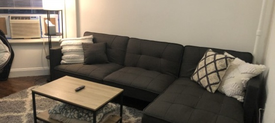 Housing Near NYU Whole Apartment for Sublet! Common Areas Furnished
